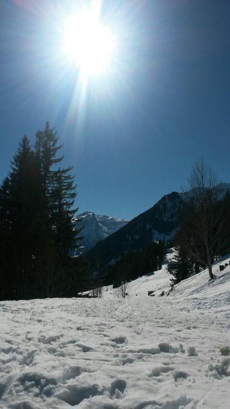 Winter, Schnee, Sonne