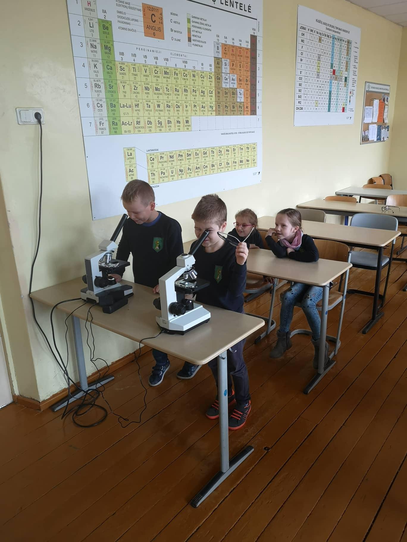 Pažintis su mikroskopu