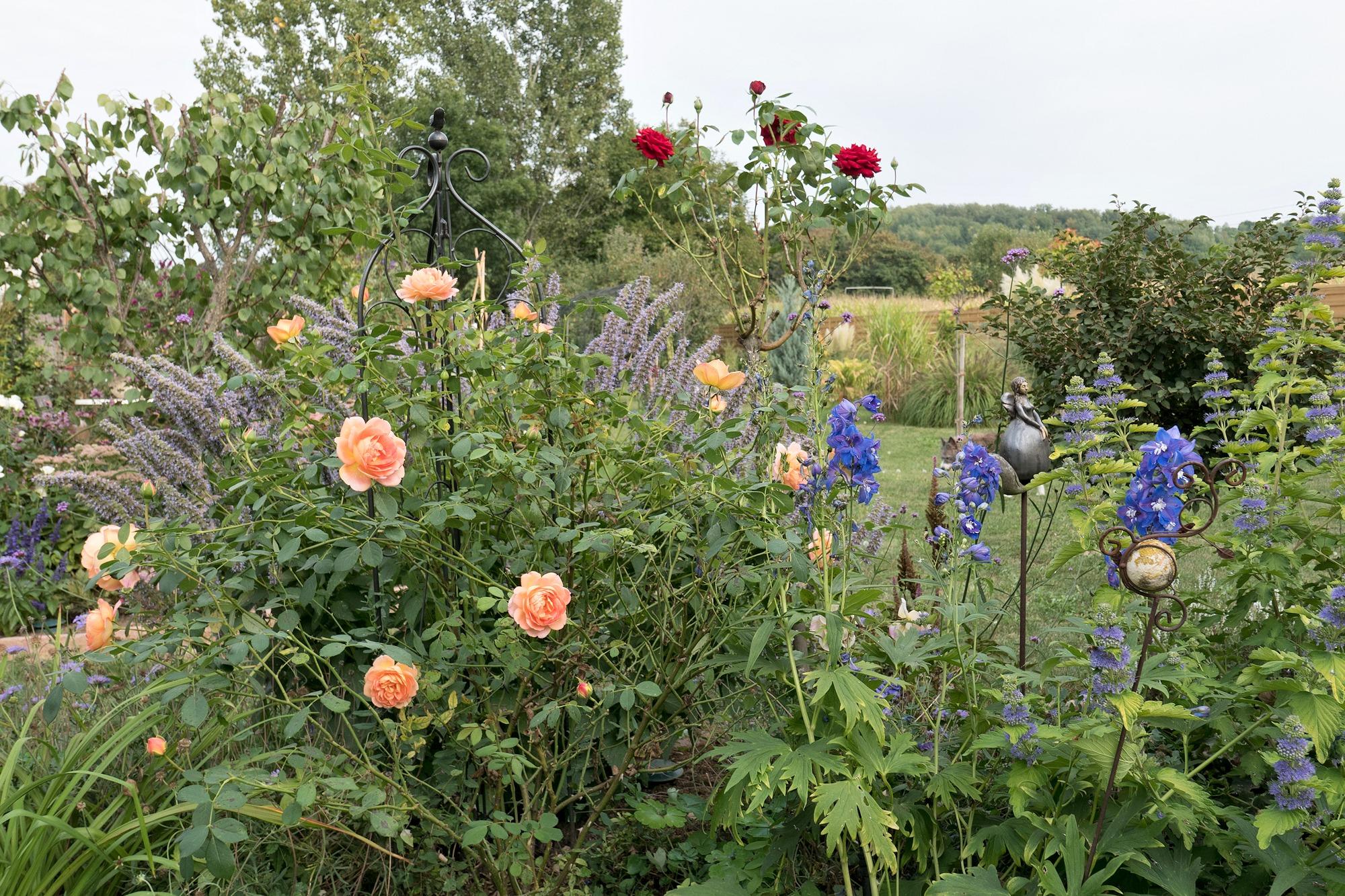 Garten - Mitte September