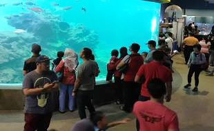 IOI MALAYSIA (FP): Visitors at the Aquarium of Borneo Marine Research Institute (BMRI)