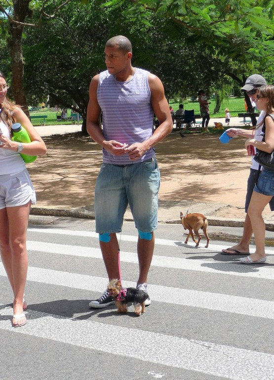 Porto Alegre, attenti al cane, a non calpestarlo