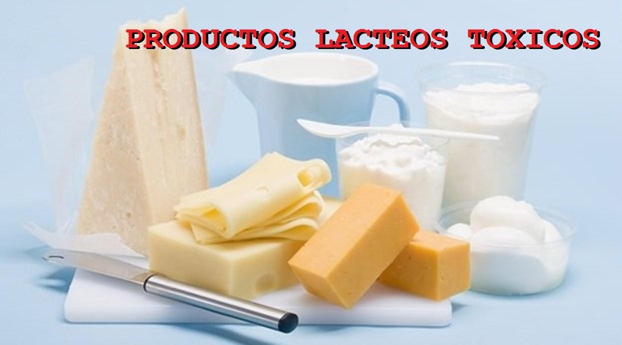 Piramide alimenticia productos lacteos