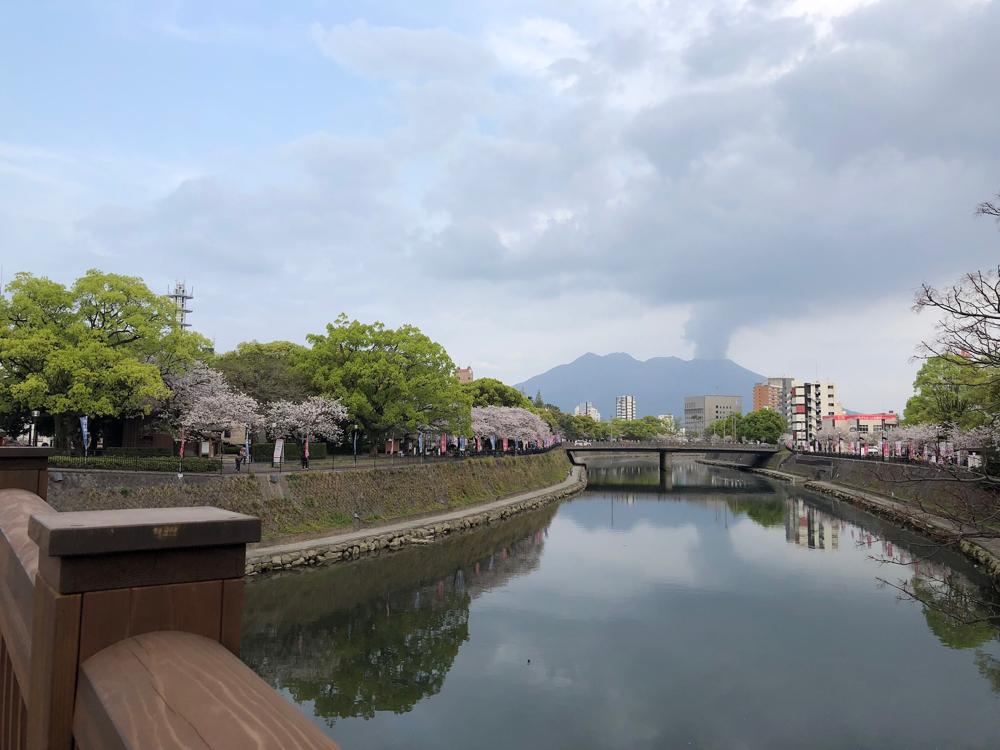 熊本…でなく鹿児島は、西郷どんで大盛り上がりです!