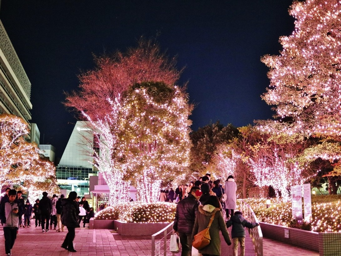 冬の期間、3か月続く東京都内でも有数のイルミネーション