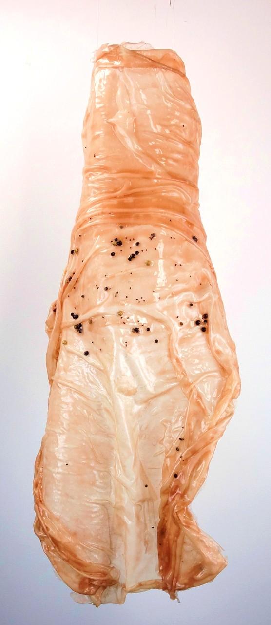 Häutung mit Samen. Silikon, Seide, Samen, Pigmente, ca. 75 x 36 x 17 cm