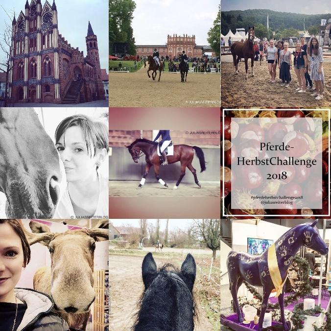 PersönlicheHighlights Julia's ReiterBlog PersonalBestNine Instagram
