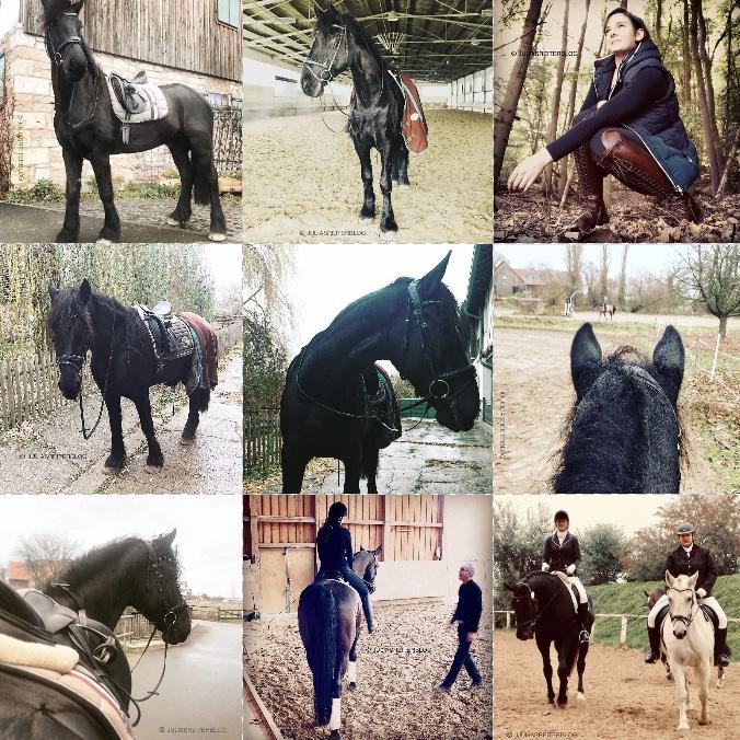Julia's ReiterBlog BestNine2018 Instagram InstagramBestNine