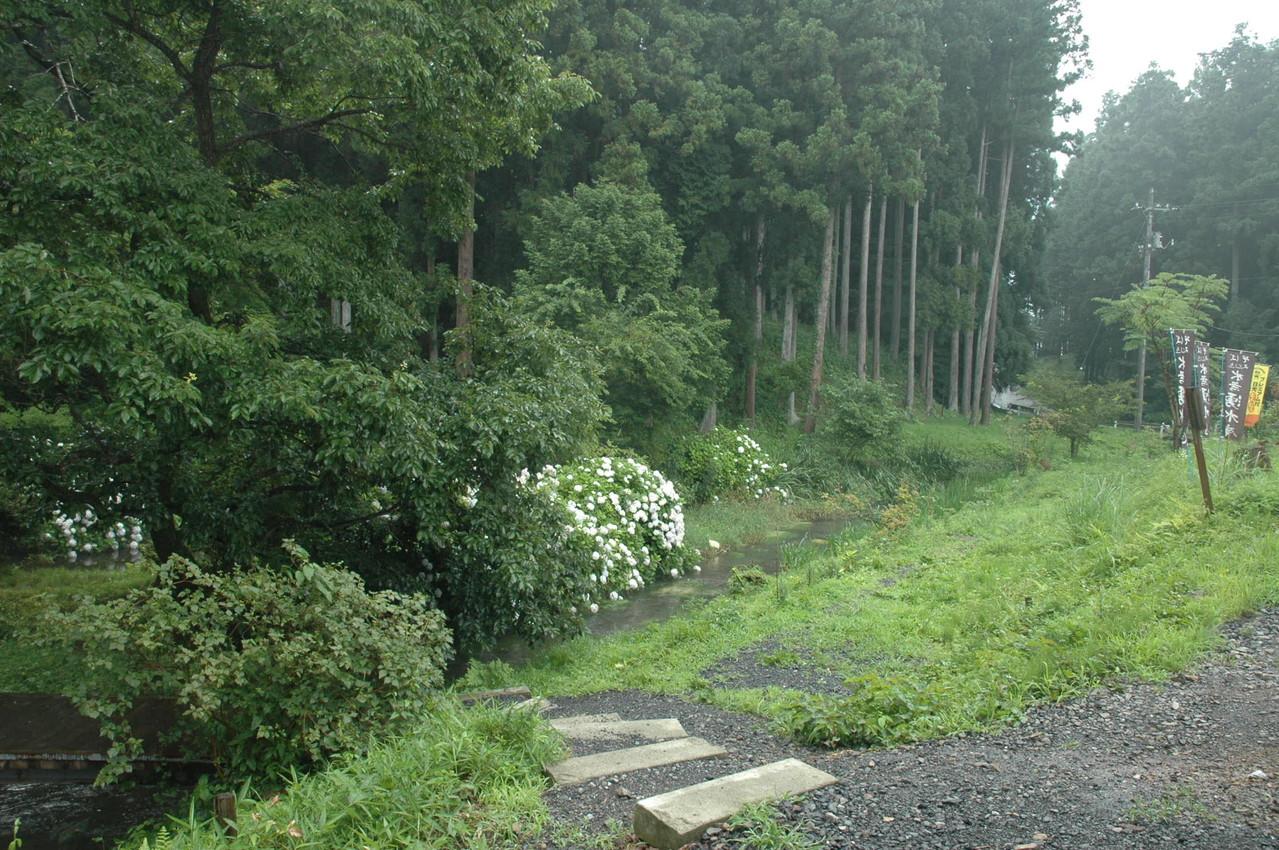 季節の木々や花々を楽しめます