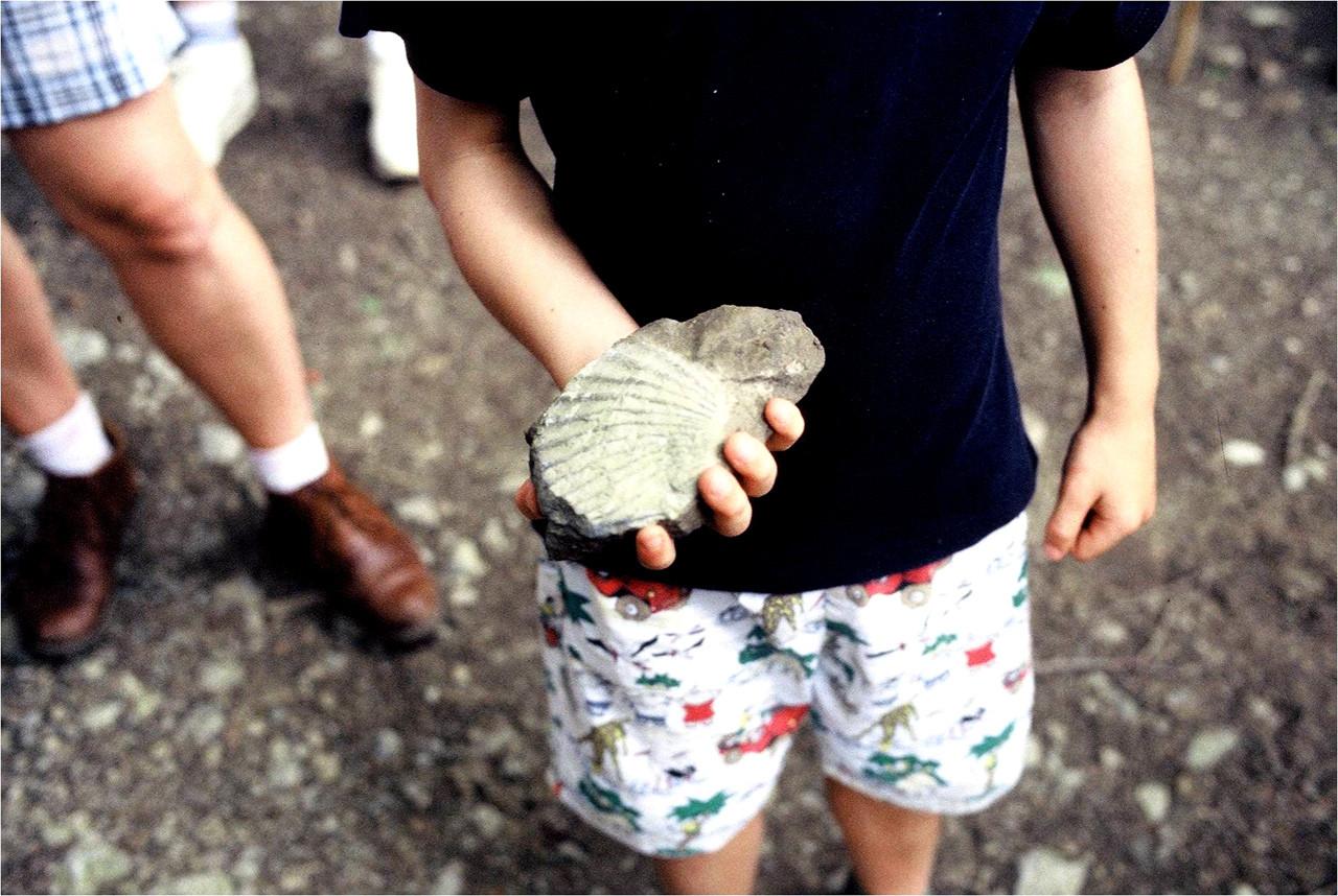 Regarde le fossile que j'ai trouvé sur le sol !
