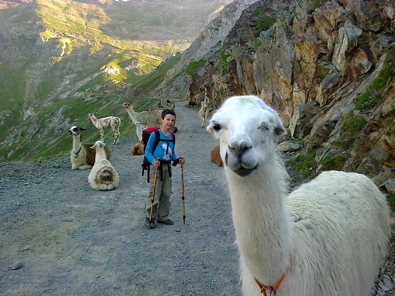 sur les pentes du Pic du Midi de Bigorre