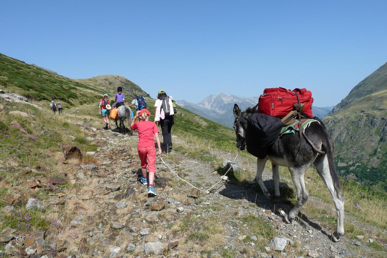 séjour randonnée avec des ânes