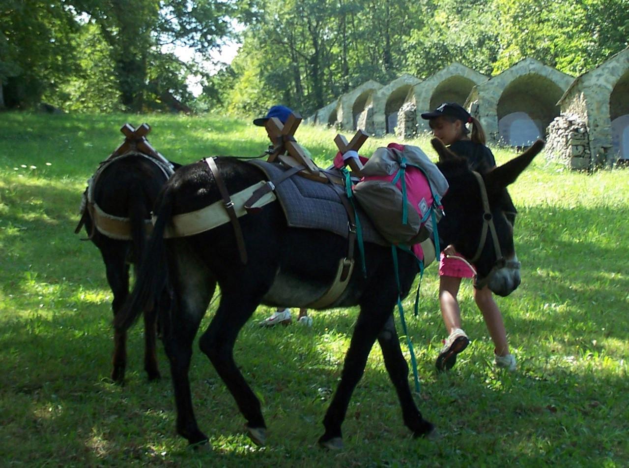 2 jours avec des ânes