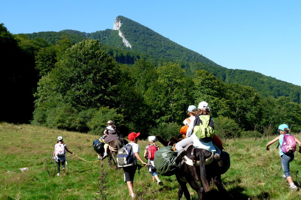 En passant par la montagne... avec un âne !