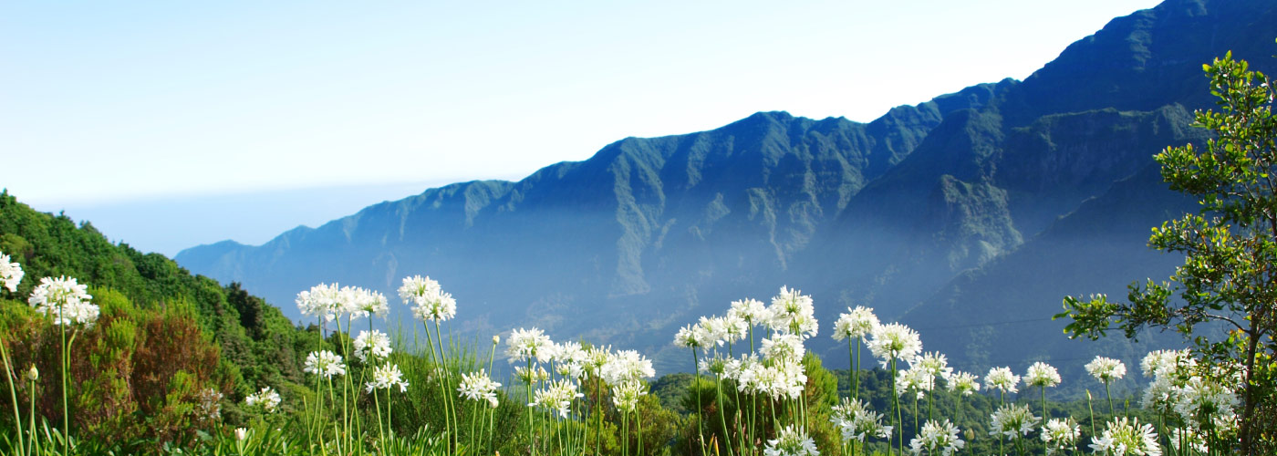 madeira-Travel-Guide""