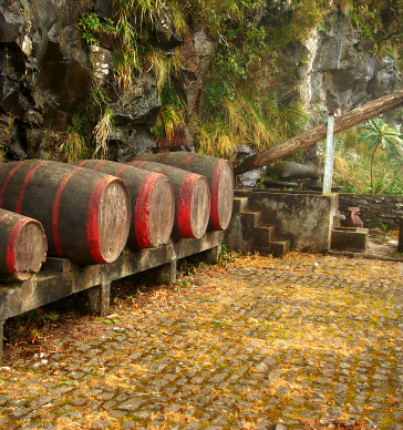 food-and-wine-tour-madeira