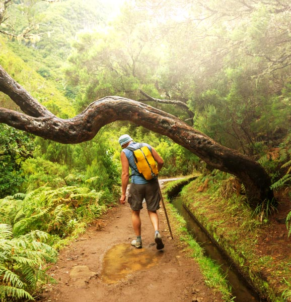 Paradise-Valley-Levada-Walk-top-things-to-do-madeira