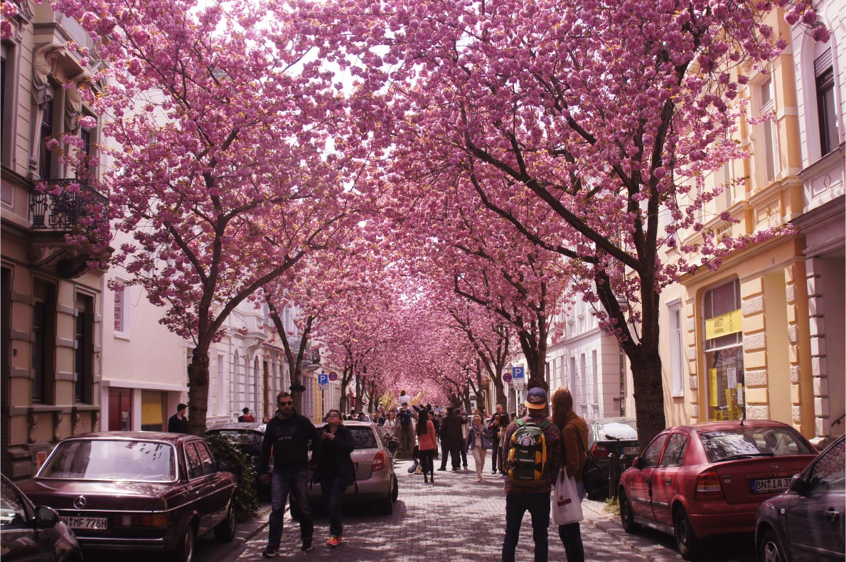 Best Places to visit in Germany - Bonn copyright S.Peace - European Best Destinations