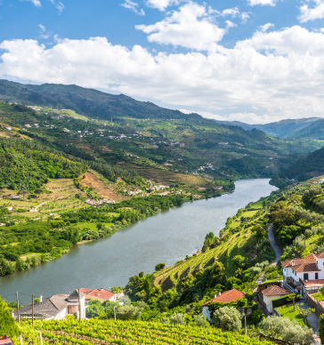 douro-valley-wine-tour-from-porto