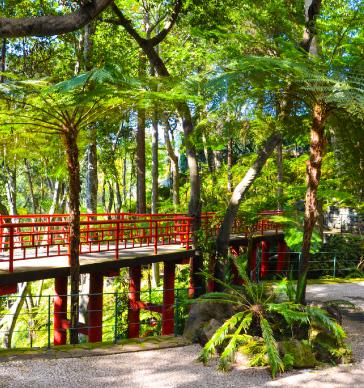 jardim-monte-palace-garden-madeira
