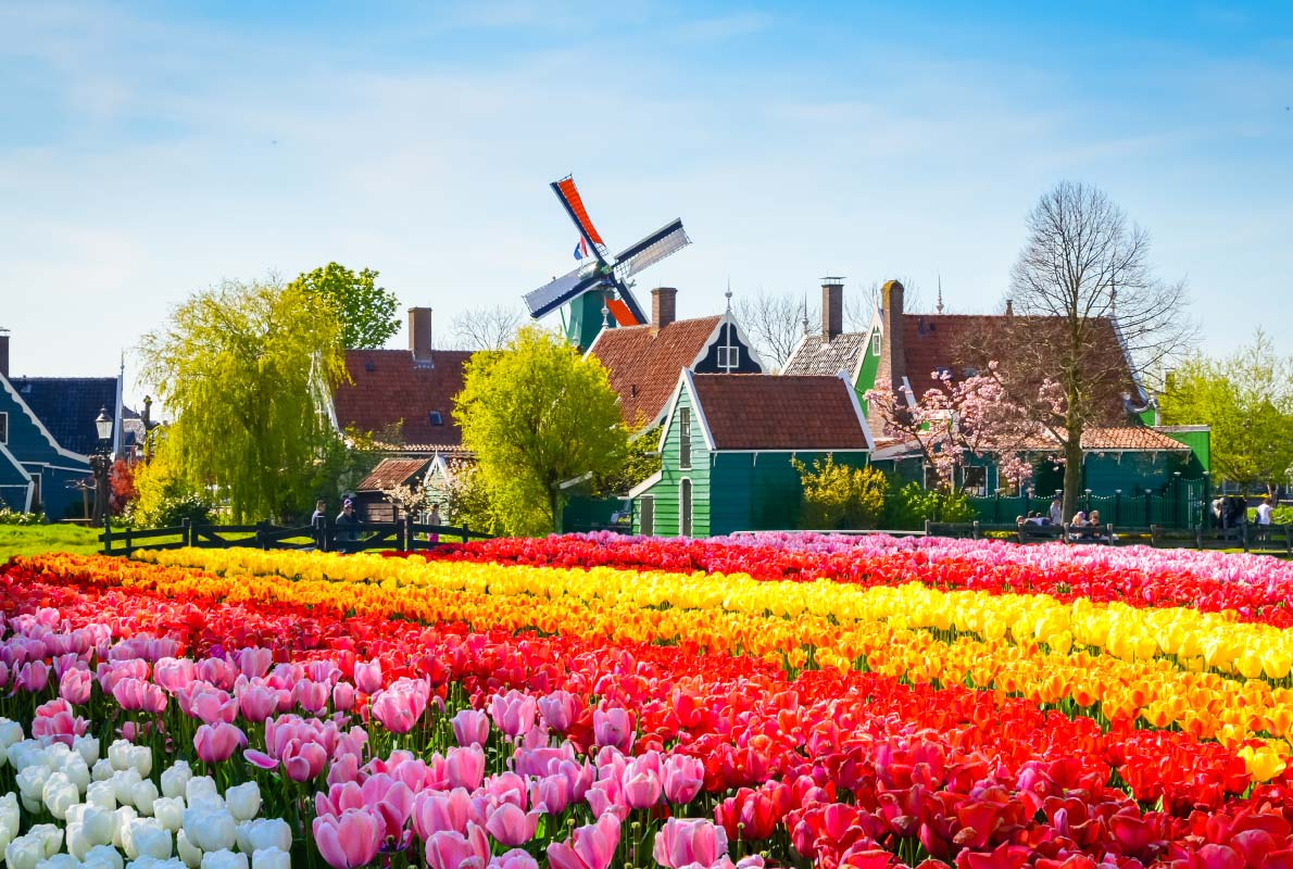 Zaanse-Schans-spring-flowers-best-easter-destinations