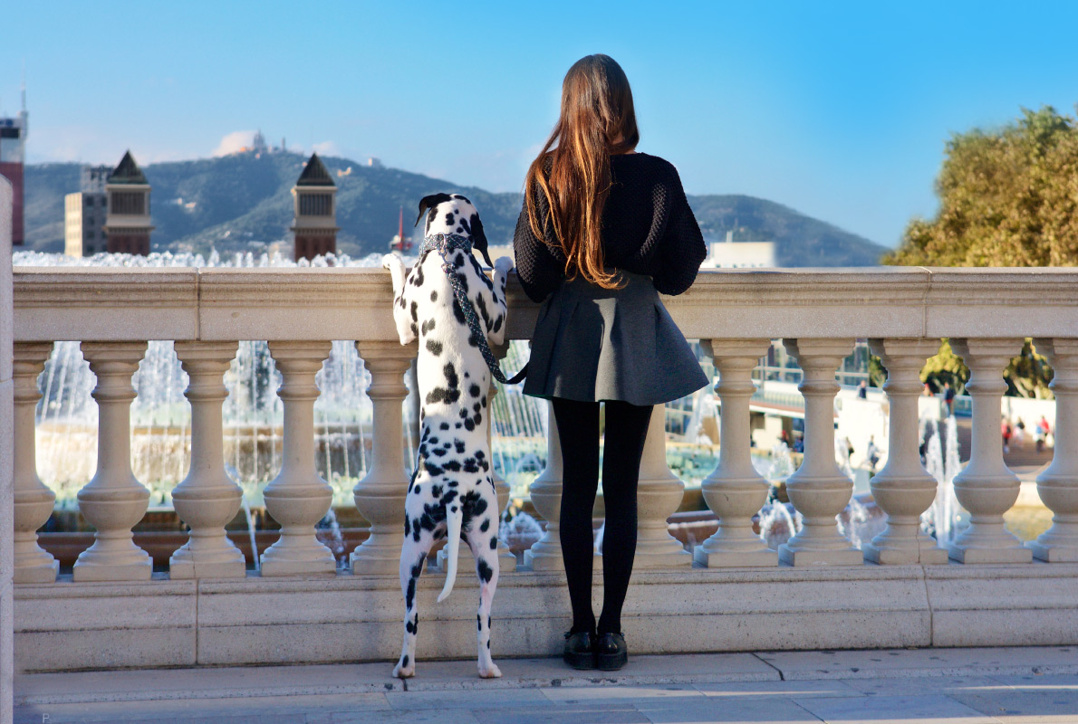 Madrid - Best dog friendly destinations in Europe - Copyright Stan de Haas Photography - European Best Destinations