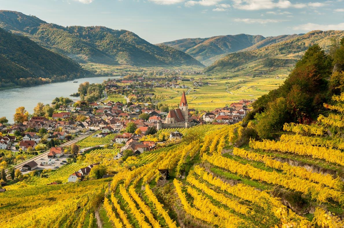 Best things to do in Austria - Wachau Wine Tour  - Copyright   Stefan Rotter - European Best Destinations