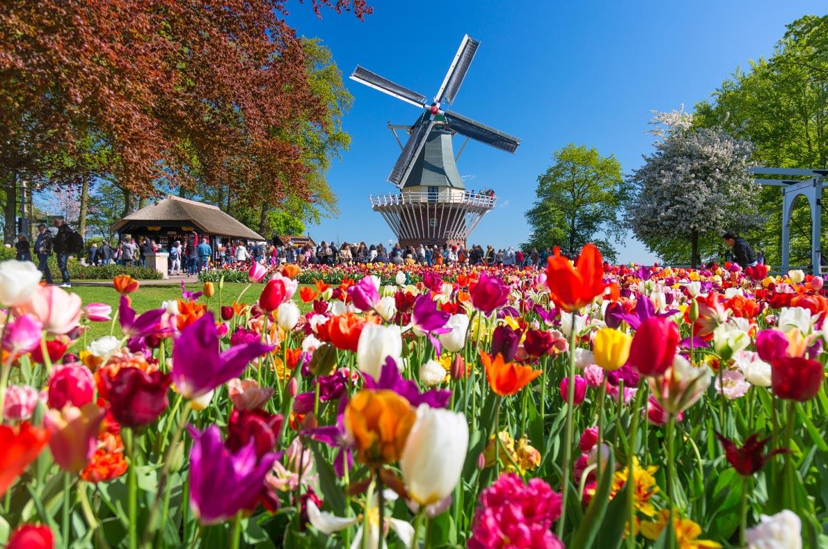 Best places to visit in the Netherlands - Keukenhof - copyright Nikolay Antonov - European Best Destinations