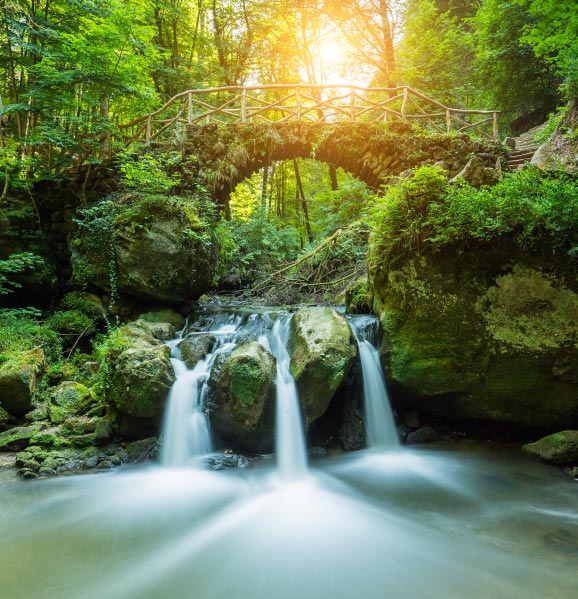 mullerthal-luxembourg-best-destinations-for-nature-lovers