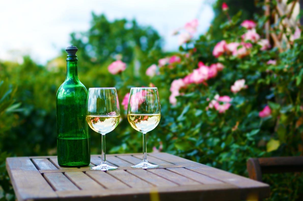 Best things to do in Austria - Vienna wine tour - Copyright Alfredo Jr - European Best Destinations