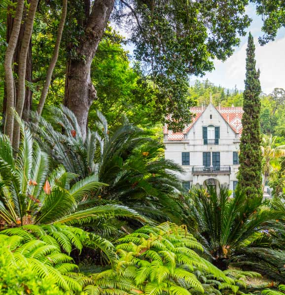 monte-palace-garden-best-things-to-do-madeira