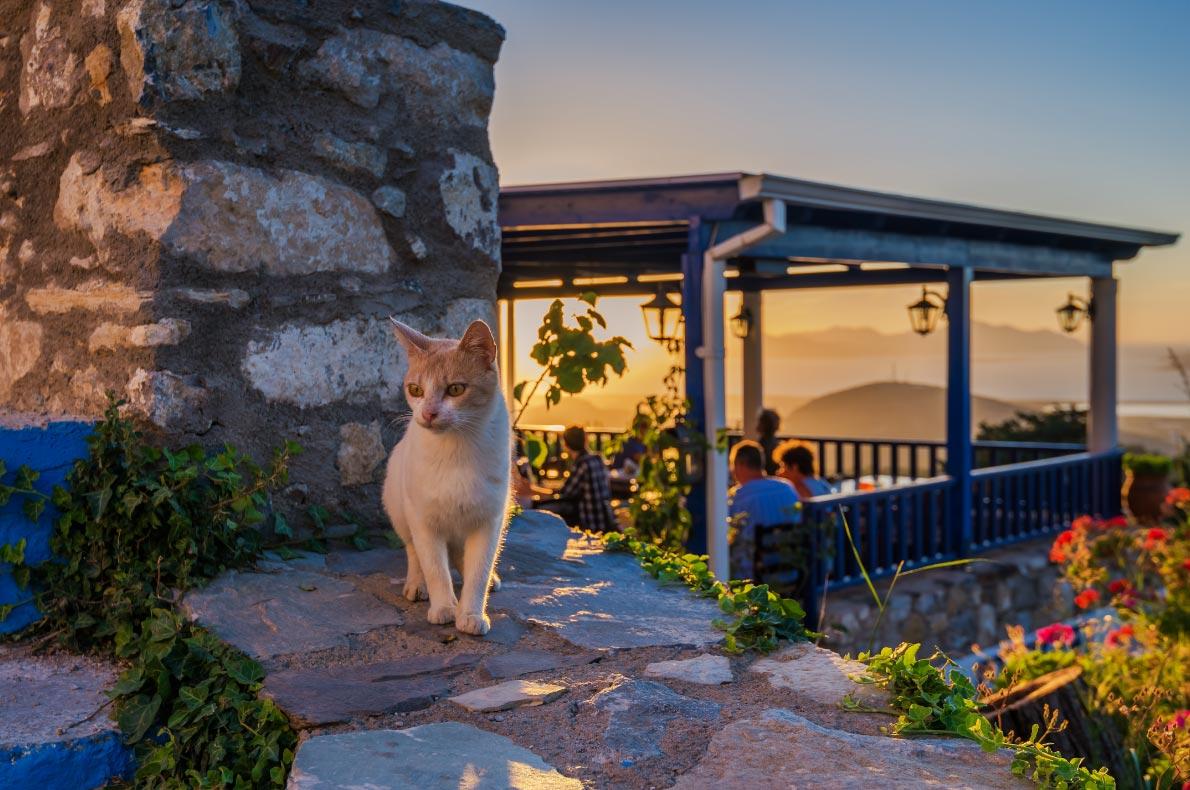 Best islands in Greece - Kos Island copyright  George Papapostolou  - European Best Destinations
