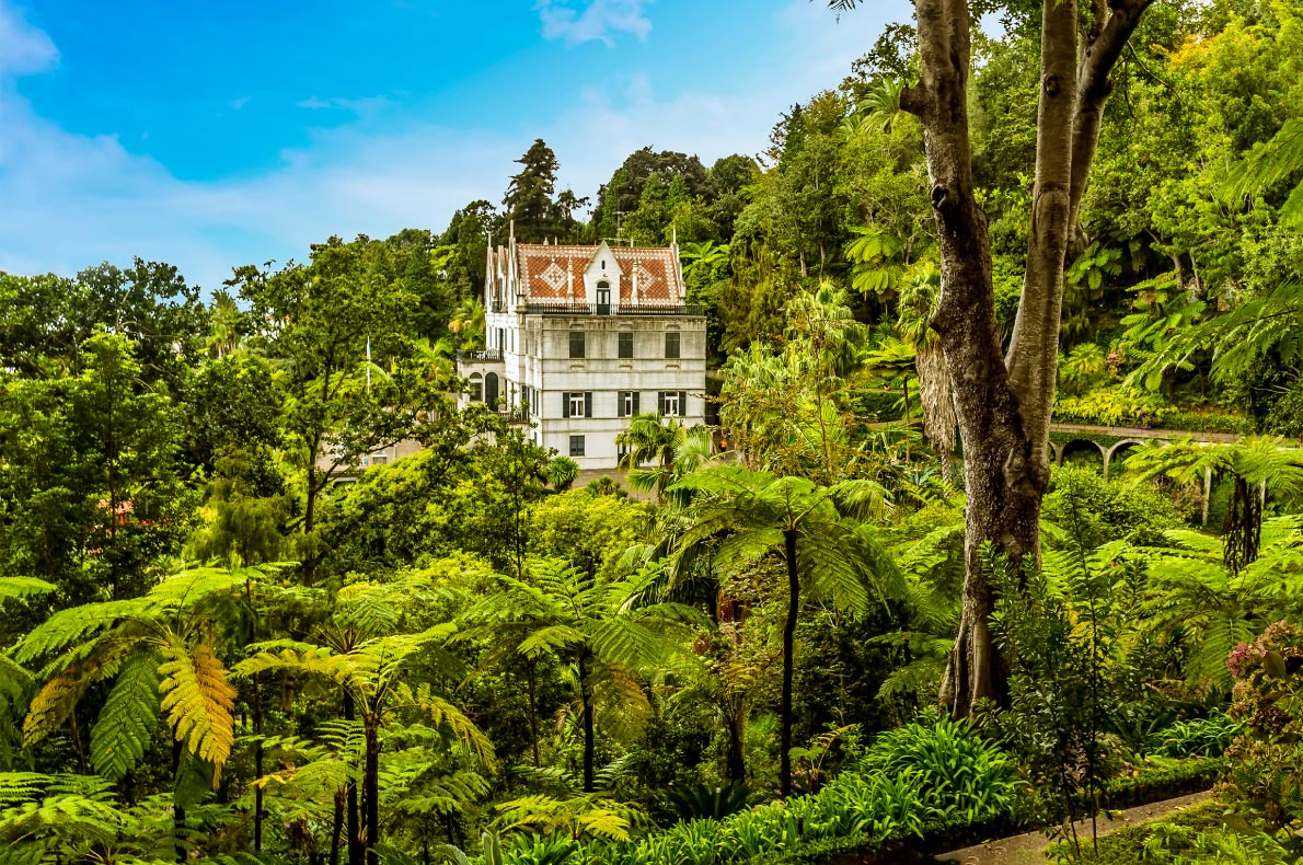 Best Instagrammable places in Madeira -   Monte Palace Tropical Garden - Copyright  Nicola Pulham