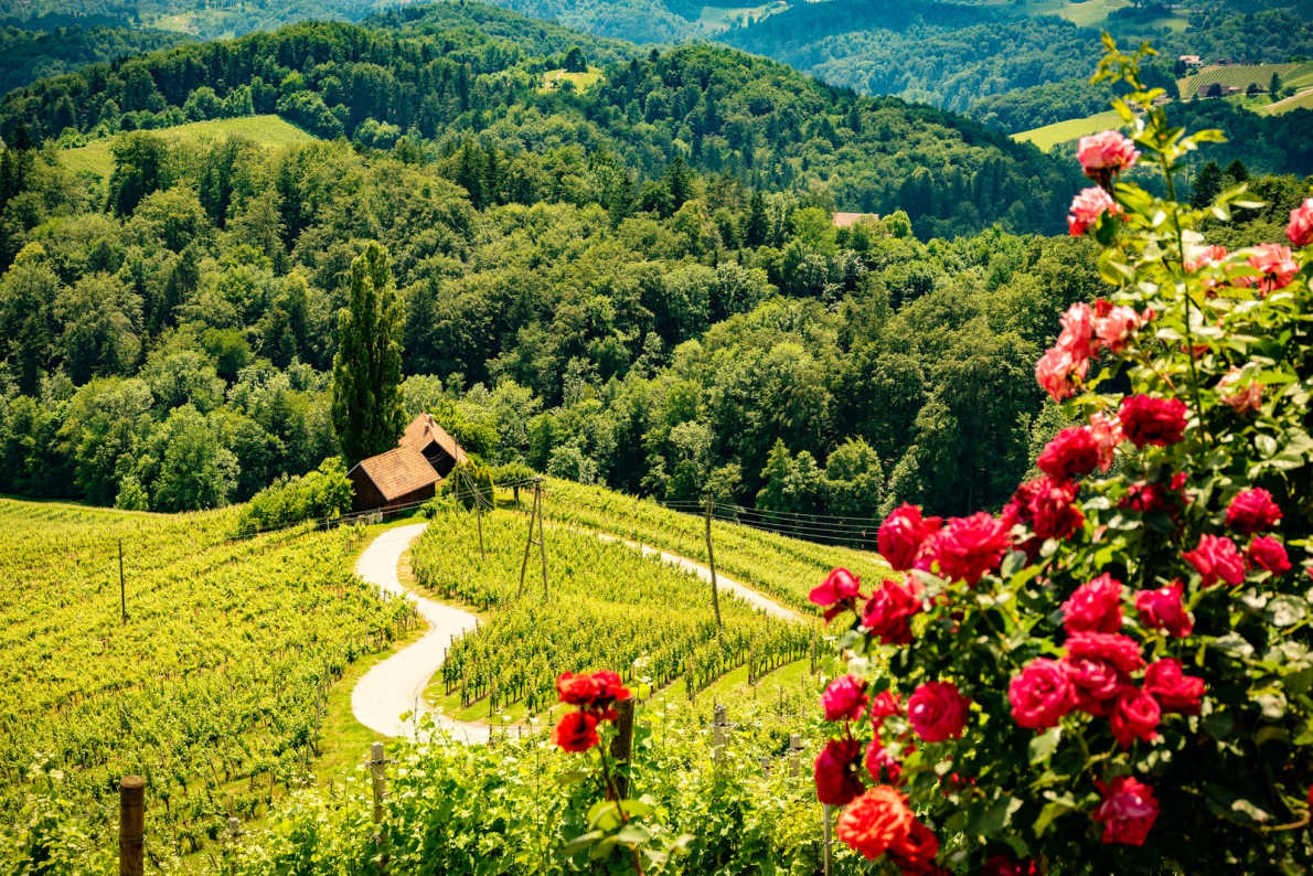 Most romantic Valentine Day destinations in Europe - Heart Shapped in Slovenia Copyright  iStock -  Przemysław Iciak   - European Best Destinations