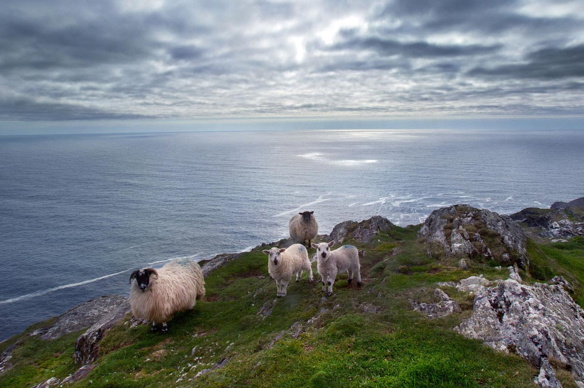 Most beautiful sustainable landscapes in Europe - Sheep's head - Copyright   Sheep's head.ie - European Best Destinations