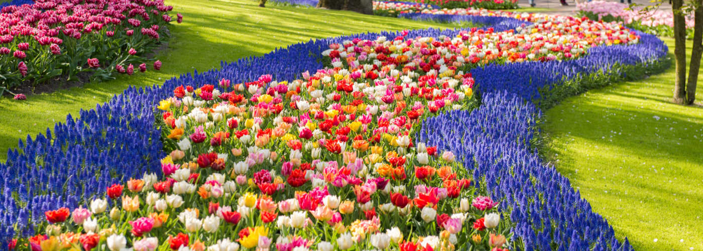 Best things to do in The Netherlands