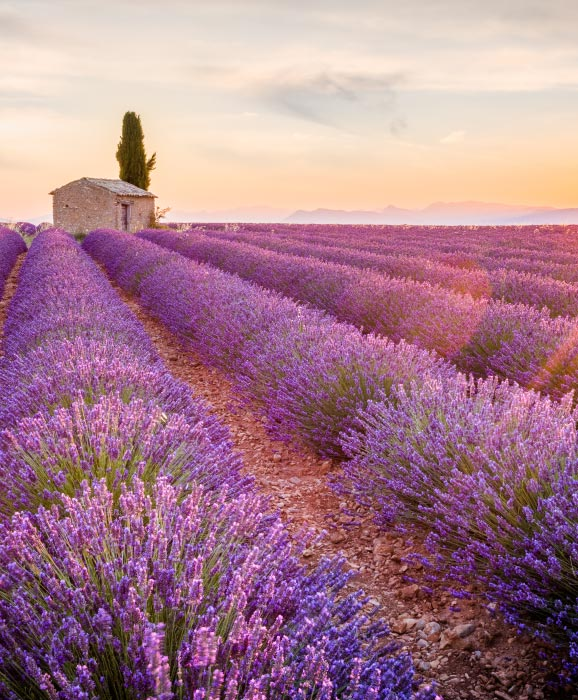 Aix-en-Provence-romantic-destination-France