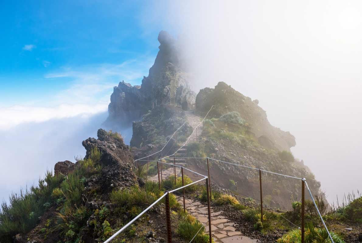pico-ariero-best-things-to-do-for-nature-lovers-in-madeira