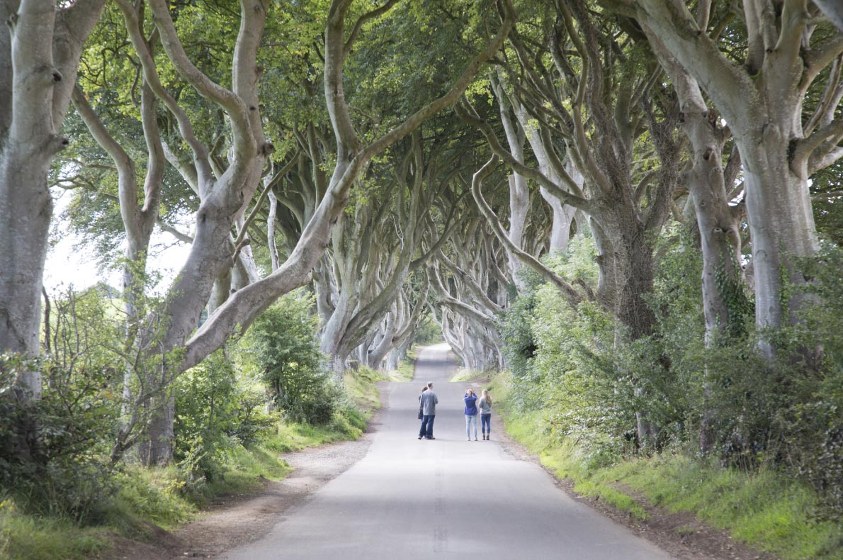 Best hiddens gems in Ireland - Dark hedges Copyright  Kevin George - European Best Destinations
