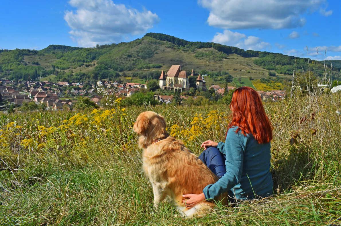 Best dog friendly destinations in Europe - Transylvania - Octavia Simina Borla - European Best Destinations