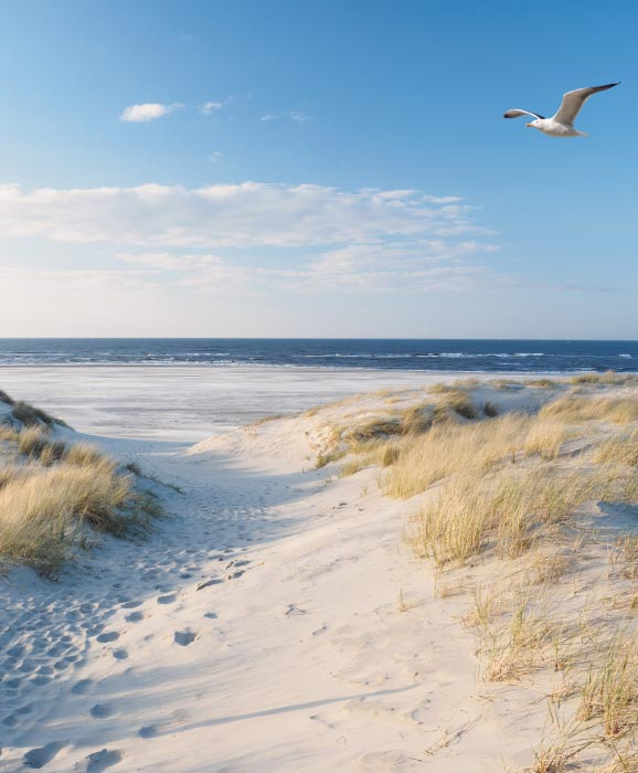 best-beaches-in-germany