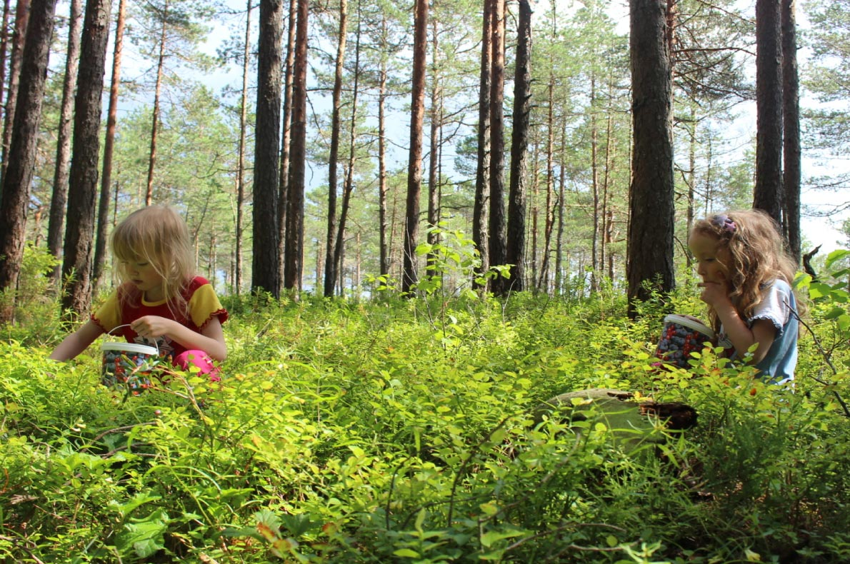 Best sustainable destinations for families in Europe - Soomaa  - Copyright  mustika karud - European Best Destinations