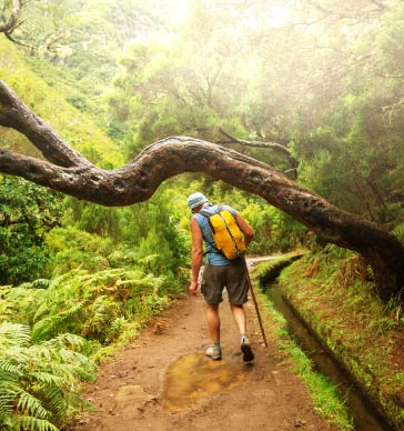 levada-walk-best-activities-in-madeira