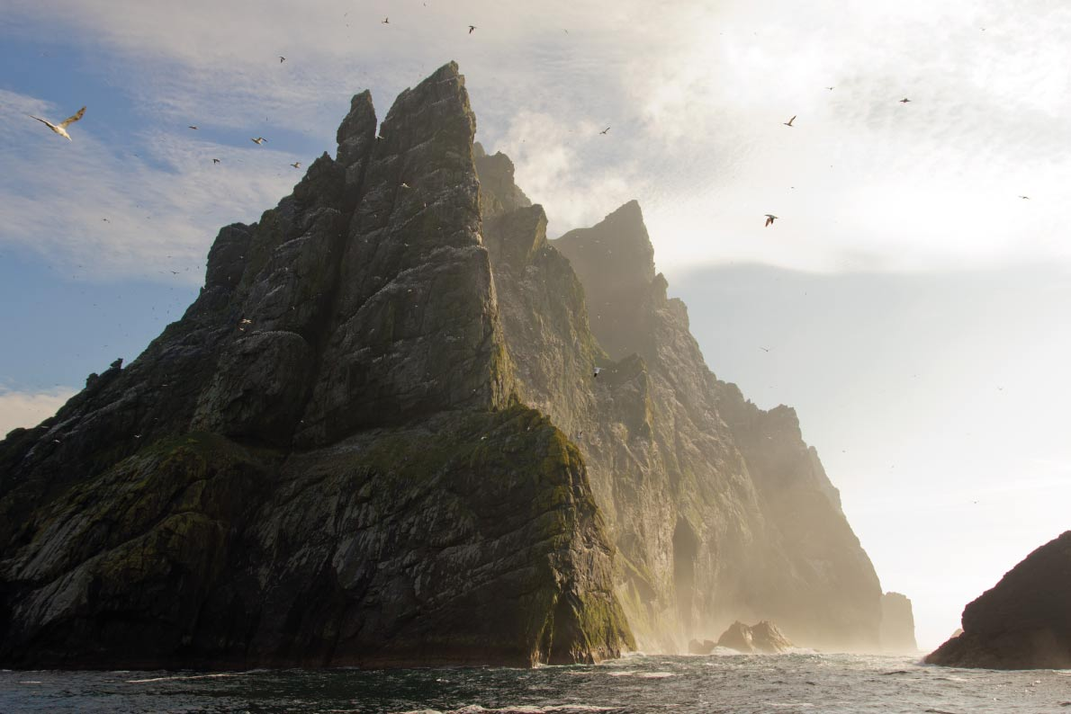 European best landscapes - Northern gannets seen on top of the remote and steep cliffs of St Kilda. . Copyright corlaffra