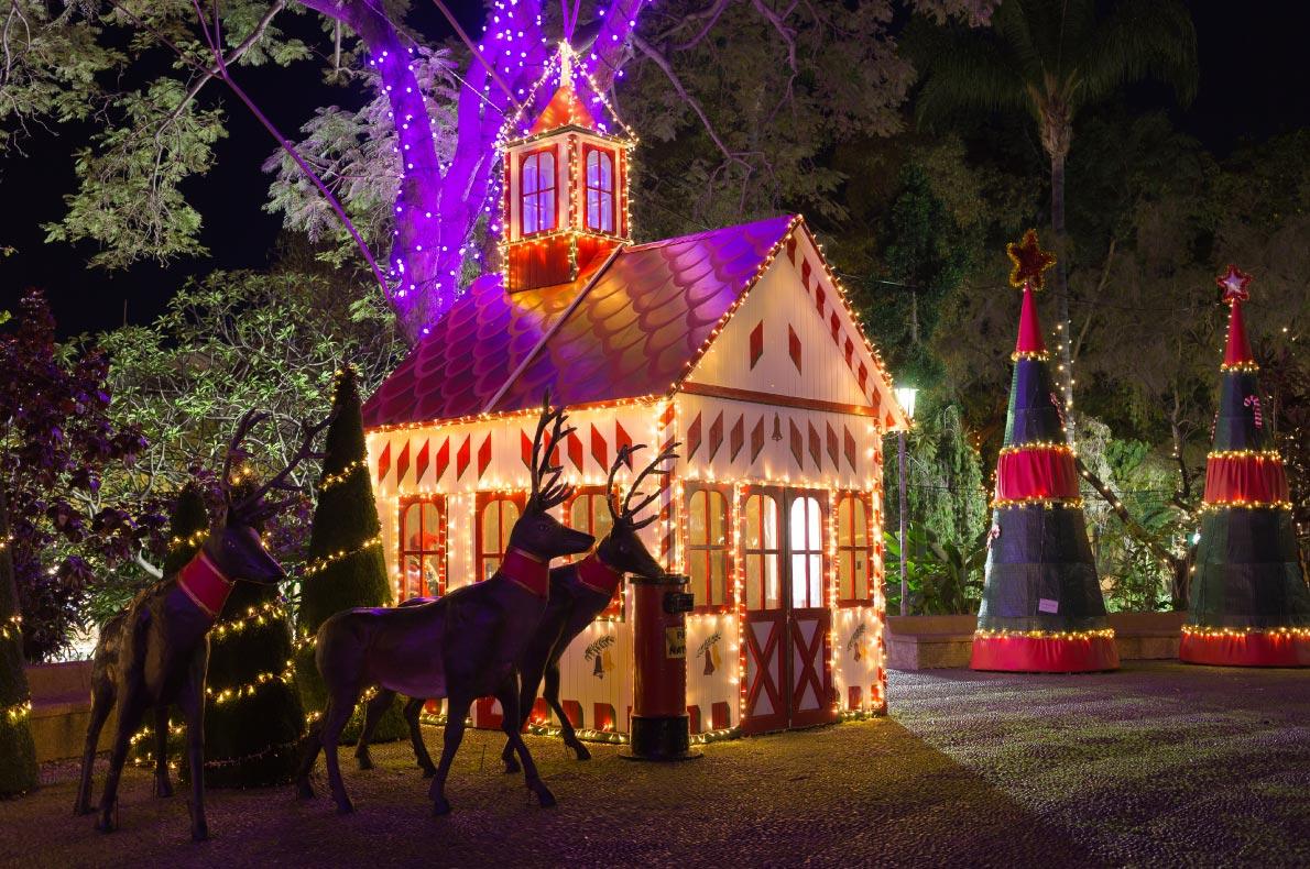 Funchal Christmas Lights - Best Christmas Lights in Europe  - Copyright   Castro-Cicero European Best Destinations