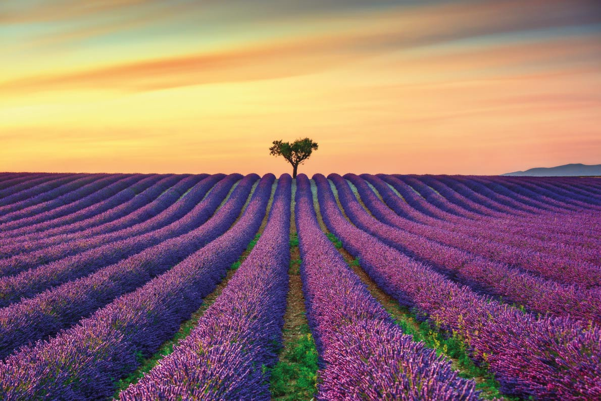 Best landscapes in Europe - Aix-en-provence - European Best Destinations - Copyrigh StevanZZ