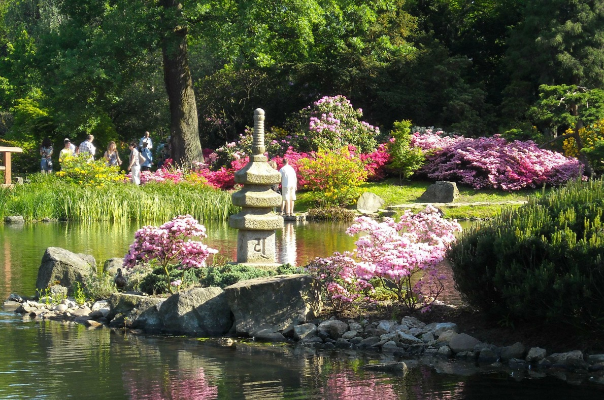 Best things to do with kids in Wroclaw - Japanese Garden