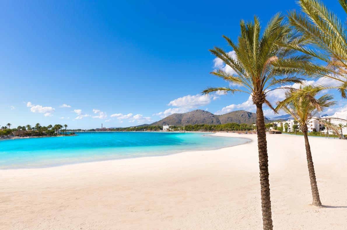 Best beaches in Spain - Platja de Alcudia beach palm trees in Mallorca  Copyright  holbox   - European Best Destinations