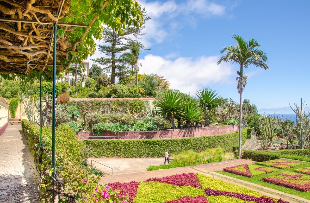 funchal-botanical-garden-madeira