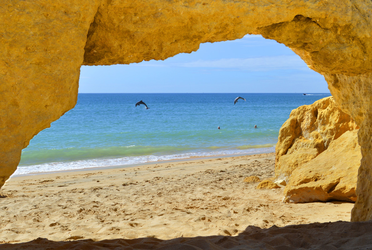 Algarve - Best dolphins and whales destinations in Europe - Peter Etchells - European Best Destinations