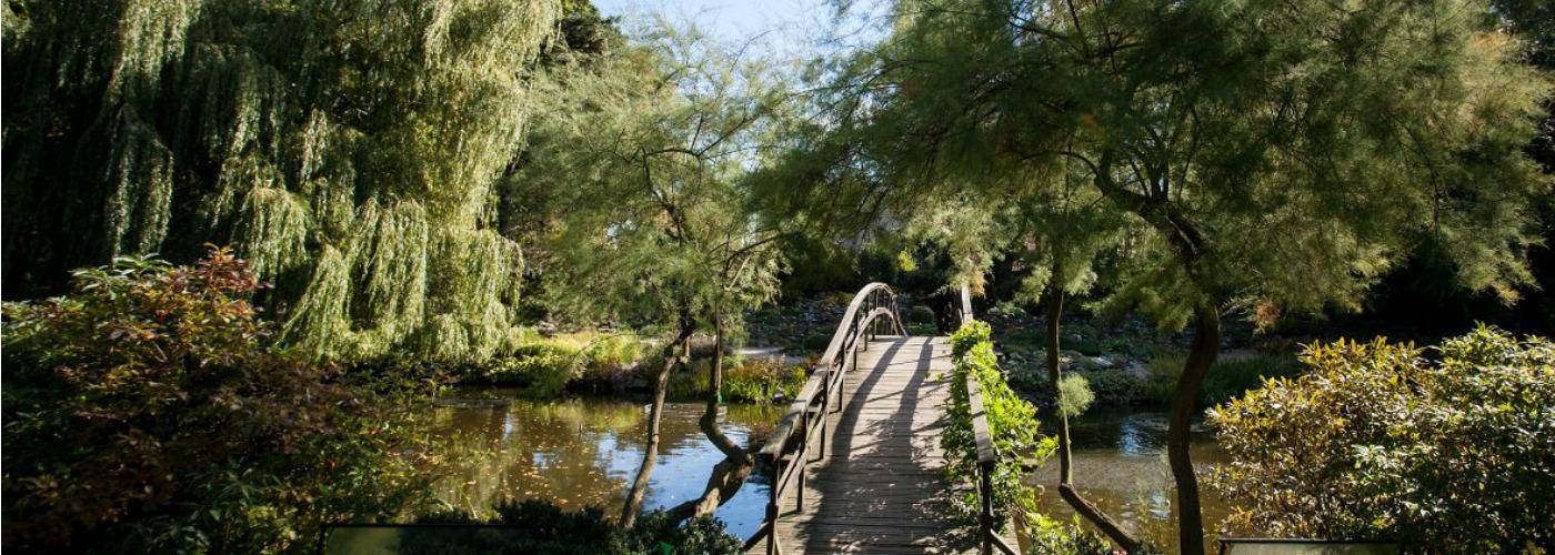 Botanical Garden wroclaw